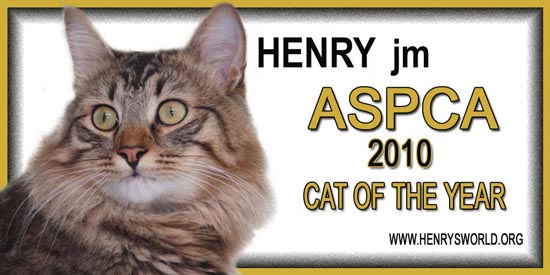 "ASPCA ""Cat of the Year"""